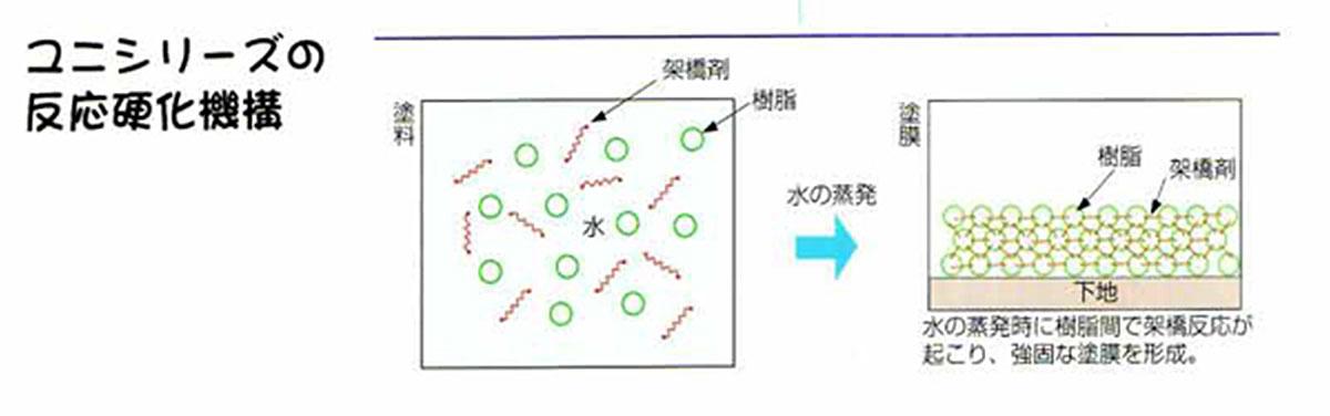ユニシリーズの反応硬化機構の図